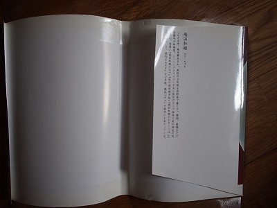 P9011385